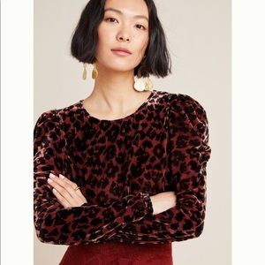 Anthropologie Dolan velvet leopard shirt NWT